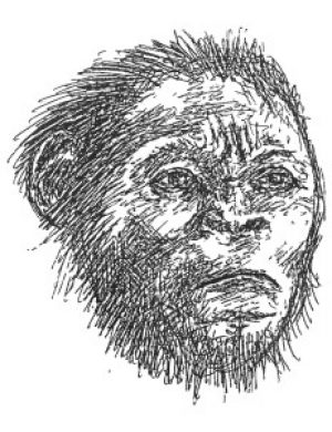 Homo naledi: The Newest Member of Our Family